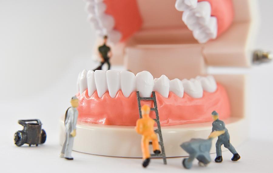 Dişin Görevleri - Dentasey Ağız ve Diş Sağlığı Polikliniği